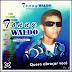 Tonny Waldo - O Melhor do Brega - Vol. 05