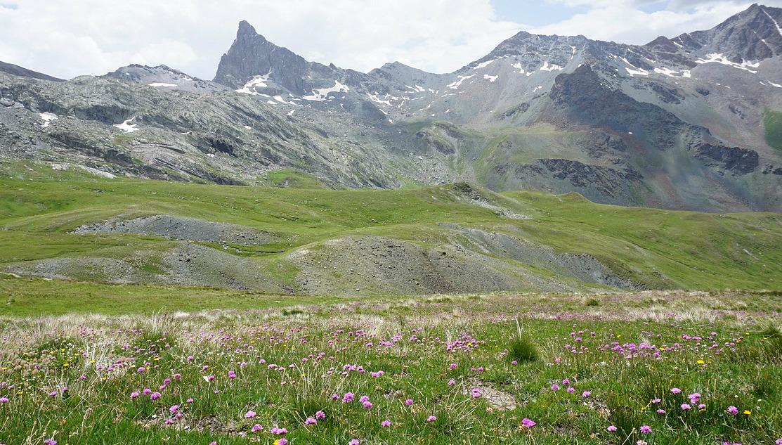 Crossing alpine meadows to Refuge de la Blanche (2499 m)