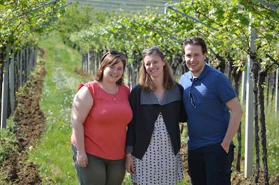 vineyards wine tour in italy