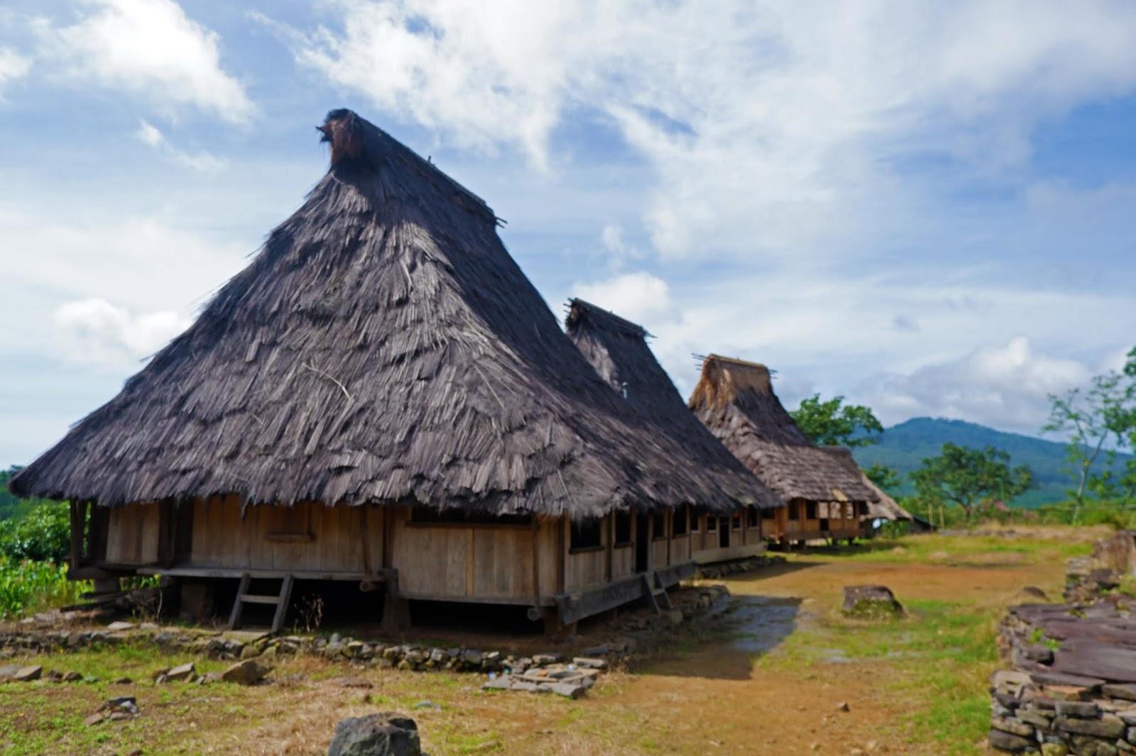 rumah wologai