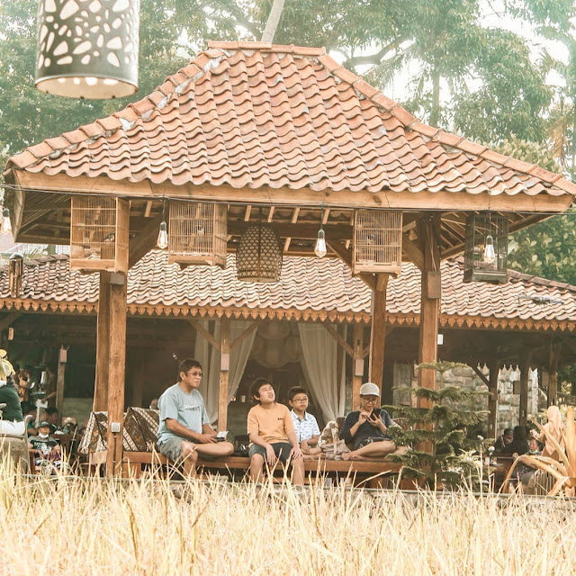 Ngopi Di Sawah Bogor Jawa Barat