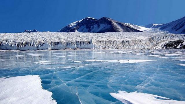 antartika benua terdingin di dunia