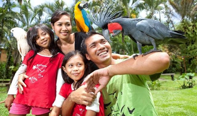 Ticket Wisata Bali Bird Park