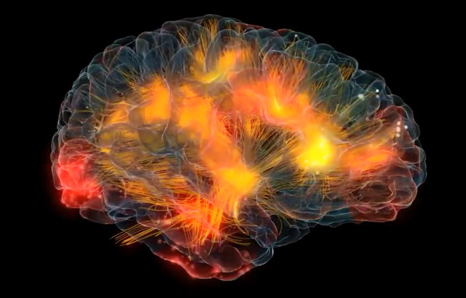 El Erminauta - Una visión del universo desde mi cueva digital.: ¿Que tanto  la percepción sensorial nos engaña respecto de nuestra definición del mundo  y del universo?