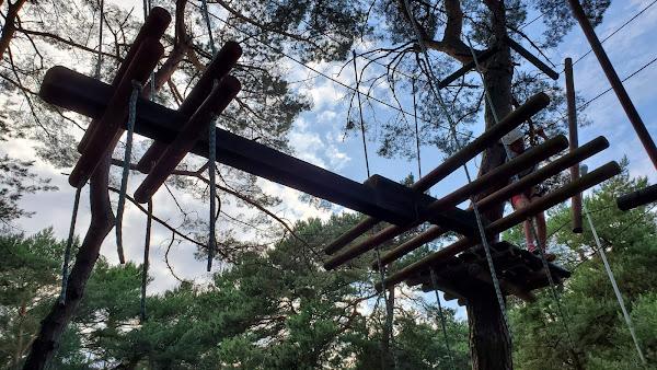 Park linowy Koala Dźwirzyno