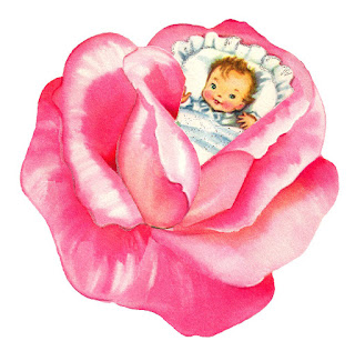 baby girl rose flower image