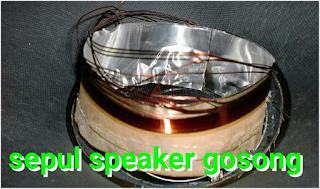Penyebab Speaker Cepat Mati dan Gosong