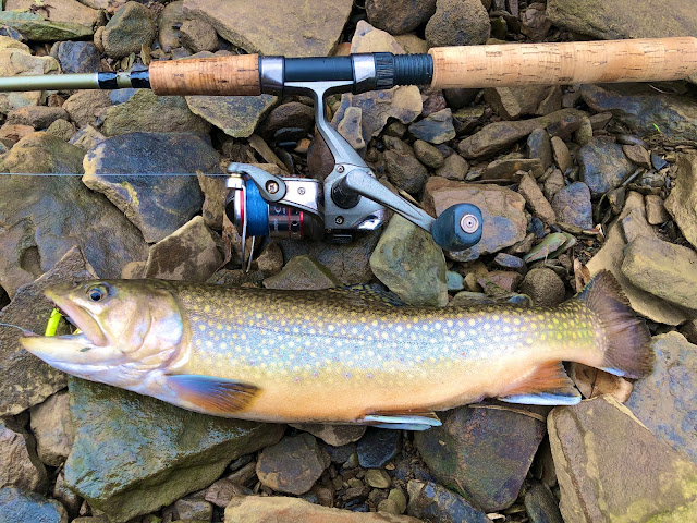 2020 Trout Stocking Schedule for North Park and Pine Creek in Allegheny County, Pennsylvania