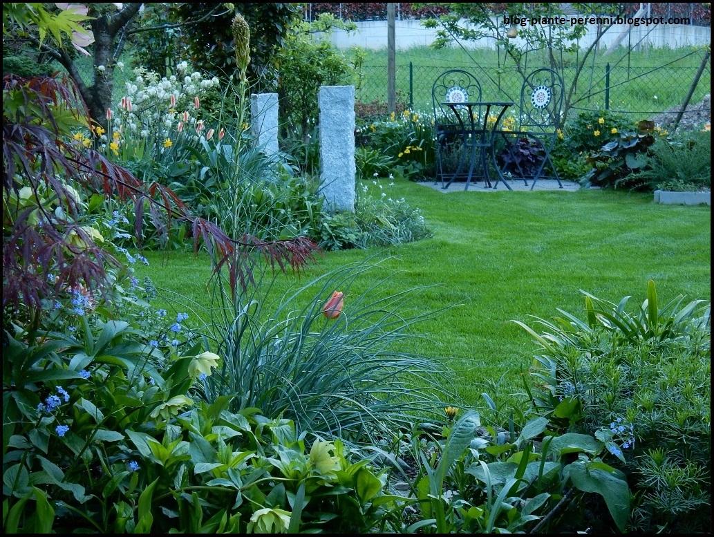 Un giardino di perenni in ticino gi ora di sfoltire - Giare da giardino ...