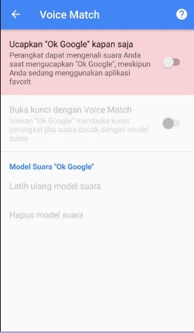 mengaktifkan ok google