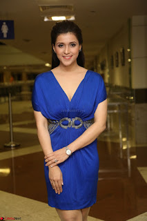 Mannara Chopra in Short Blue Dress at Rogue Movie Teaser Launch 1st March 2017 109.JPG