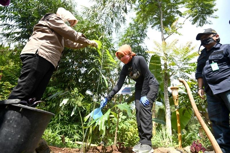 Atalia 'Estafet' Tanam Aren di  Ciburial, Dukung Gerakan Bersyukur dengan Tanam Pohon