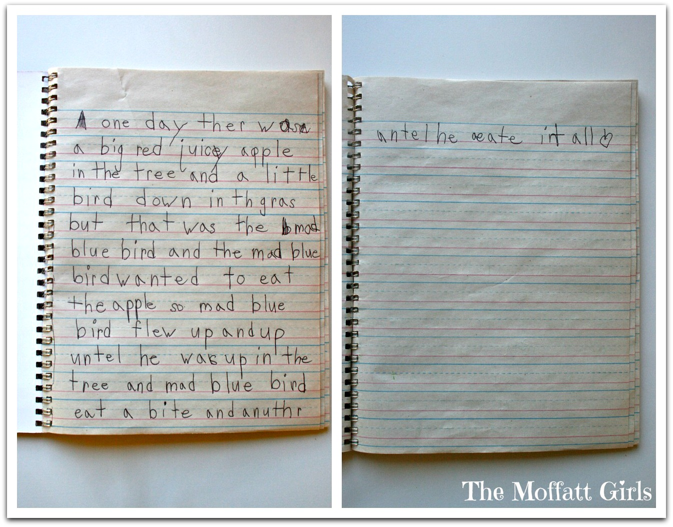 in journals writers should write about
