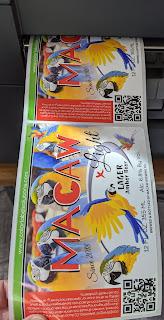 C6500 Matte Paper Labels
