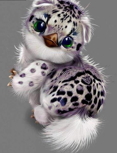 Hình Nền Điện Thoại Cute Loài Vật Độc Lạ