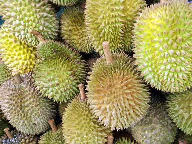 Khasiat Buah, Kulit dan Daun Durian
