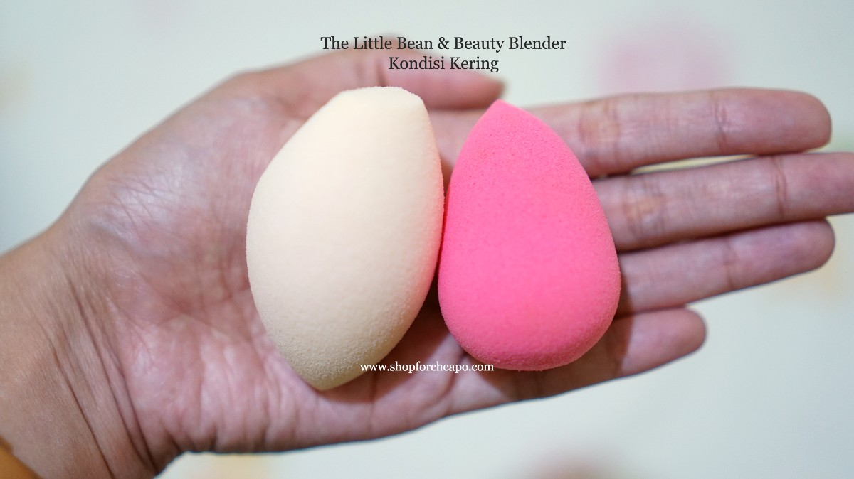 Rosé All Day The Little Bean Review vs Beauty Blender