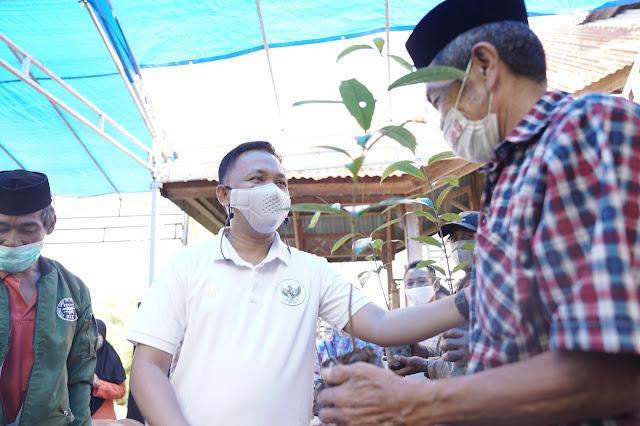 Diharapkan Sejahterakan Warga Bonto Tappalang, Bupati Bantaeng Serahkan 4.000 Bibit Pala