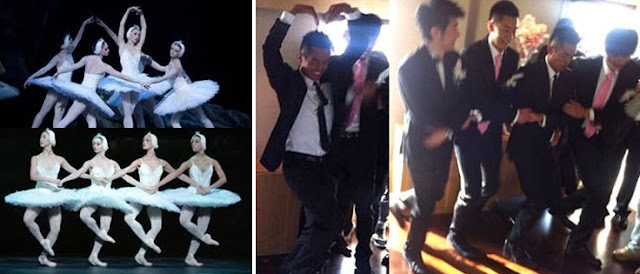 """the princess turned into a swan by an evil sorcerer in the """"Swan Lake"""". LOL."""