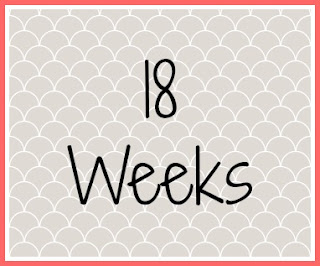 Twin Pregnancy Diary - 18 weeks