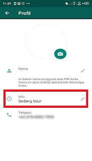 cara membuat status profil kosong atau info whatsapp kosong