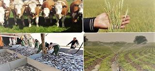 tarim-ve-hayvancilik-desteklemeleri-2020