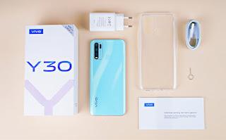 HP Vivo Y30