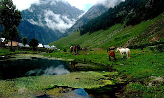 Places to visit in Jammu and kashmir ( sonmarg )