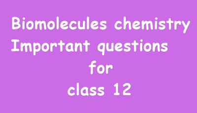 Biomolecules chemistry Important questions for class 12