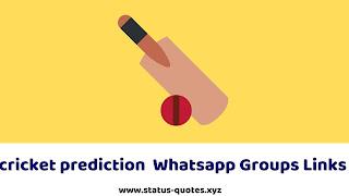 50+ Cricket Prediction Whatsapp Group Links
