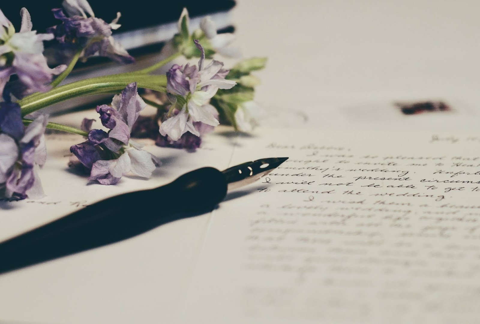 close up photo of a letter and purple flowers