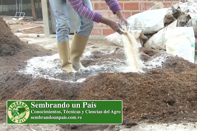 preparación de sustrato con cal agrícola