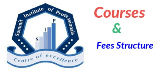Courses offered by Summit Institute of Professionals 2018/2019