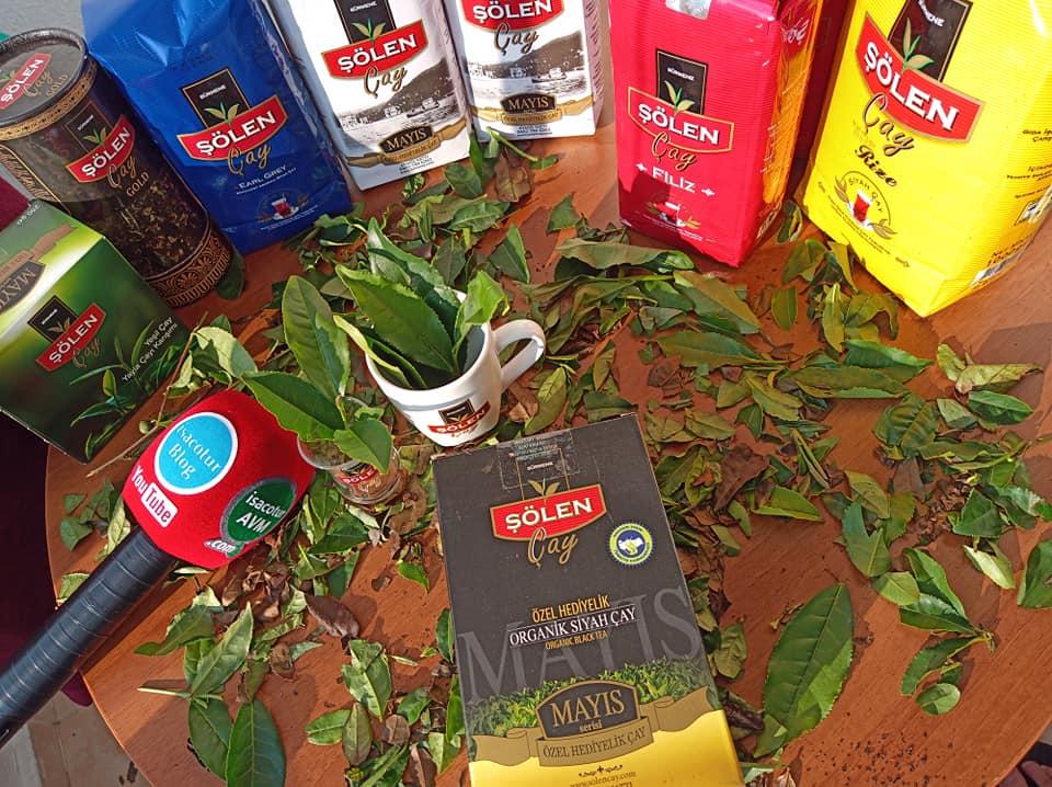 Şölen Organik Siyah Çay, isacotur avm şölen çay