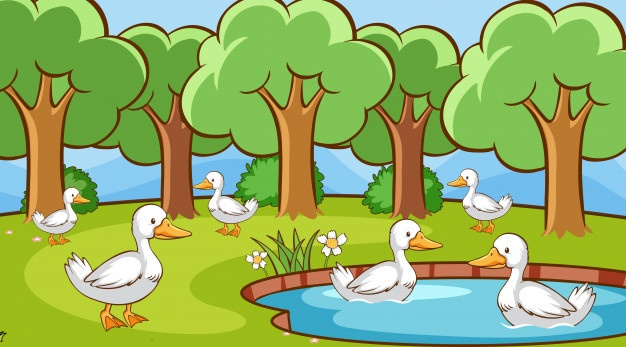 The Wise Old Bird Panchatantra Stories