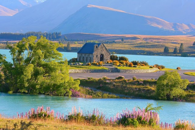 Best Time to Travel to New Zealand With Handy Tips