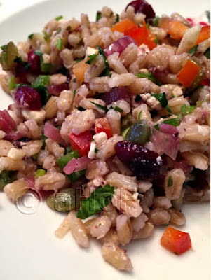 Barley Salad with Fermented Red Onion