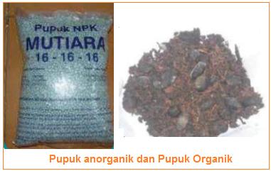Pupuk anorganik dan pupuk organik - Bahan Produksi Budi Daya Tanaman Sayuran