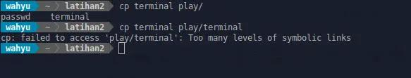 copy hello to terminal