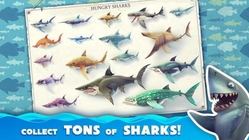 تنزيل لعبه القرش الجائع للموبايل