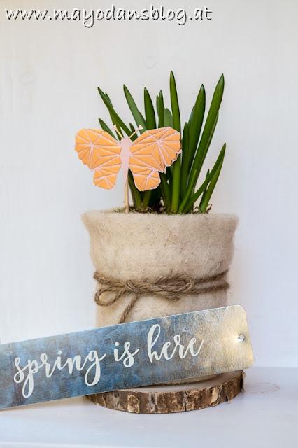 Frühlingsblumen im Altglas