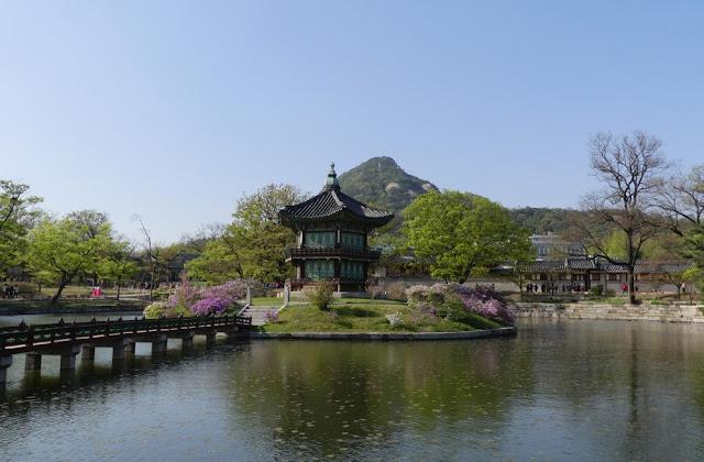 Seoul - See und Blüten im Gyeongbokgung - Hyangwonjeong Pavilion