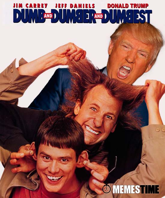 GIF Memes Time, da bola que rola e faz rir - Donald Trump: Dumb and Dumber… and Dumbest – Fight Club