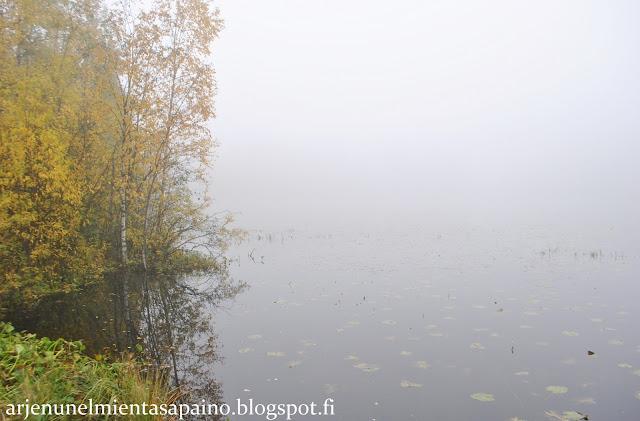 Kuopio, luonto, sumu, usva, lampi, valokuvaus, väsymys, tentti, opiskelu