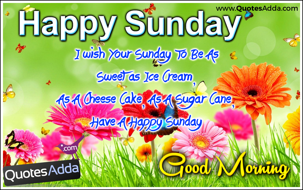Good Morning Happy Sunday Free Download : Happy sunday gif images wishes whatsapp status and quotes