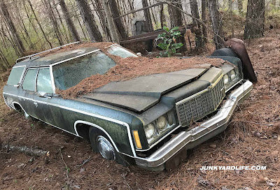 1974 Chevrolet Caprice Estate station wagon in green has been parked in woods for three decades and is covered in pine straw and sunk to the rims in the dirt.
