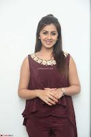 Nikki Galrani in a Brown Shining Sleeveless Gown at Nakshatram music launch ~  Exclusive 028.JPG