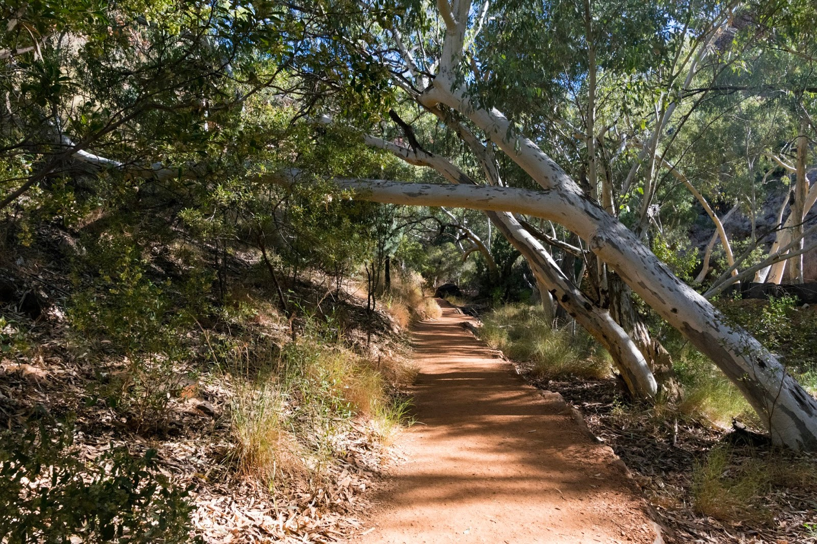 outback walking trail