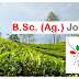 B.Sc. (Ag) Job | Assistant Manager Job in Apeejay Tea Limited