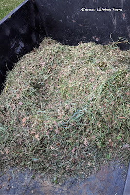 Air drying grass clippings